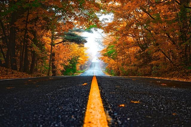 autumn-1758194_640